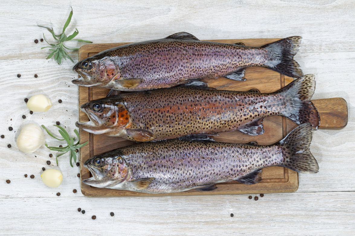Top view of fresh trout being prepared, skin coated with oil, for cooking on server board. Herbs and spices on white aged wooden boards.